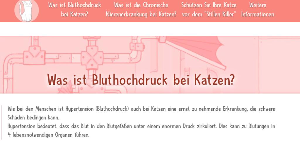 Für tiermedizinische Fachangestellte - Deutsche Gruppe Katzenmedizin